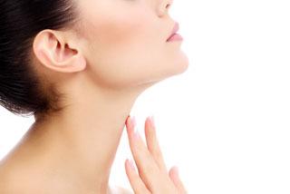 Musculatura pescoço laringe-2